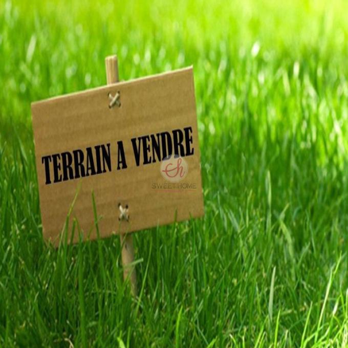 Offres de vente Terrain Le Beausset (83330)
